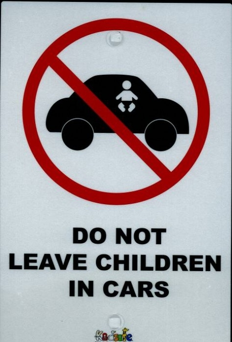 Children In Cars sign